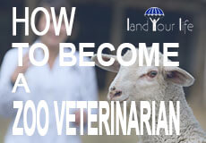 how to become a zoo veterinarian