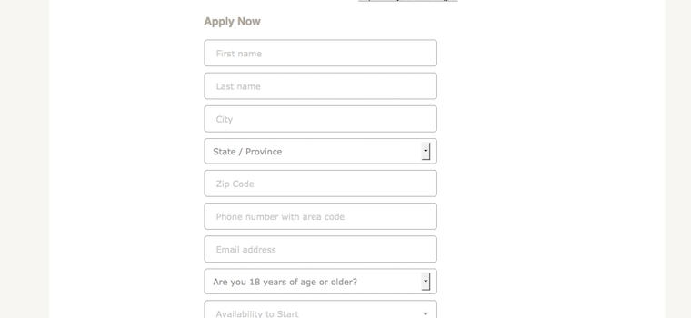 AC Moore job application