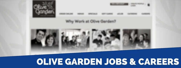 Interview questions for olive garden garden ftempo - Olive garden interview questions ...