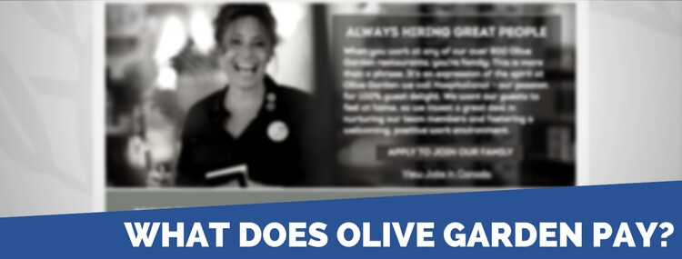 olive garden application 2018 careers job requirements interview
