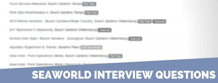 SeaWorld Interview Questions